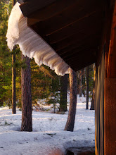 Photo: With the warm temperatures, bright sun and inside heat, the snow began to slide off the roof on the lake side ...
