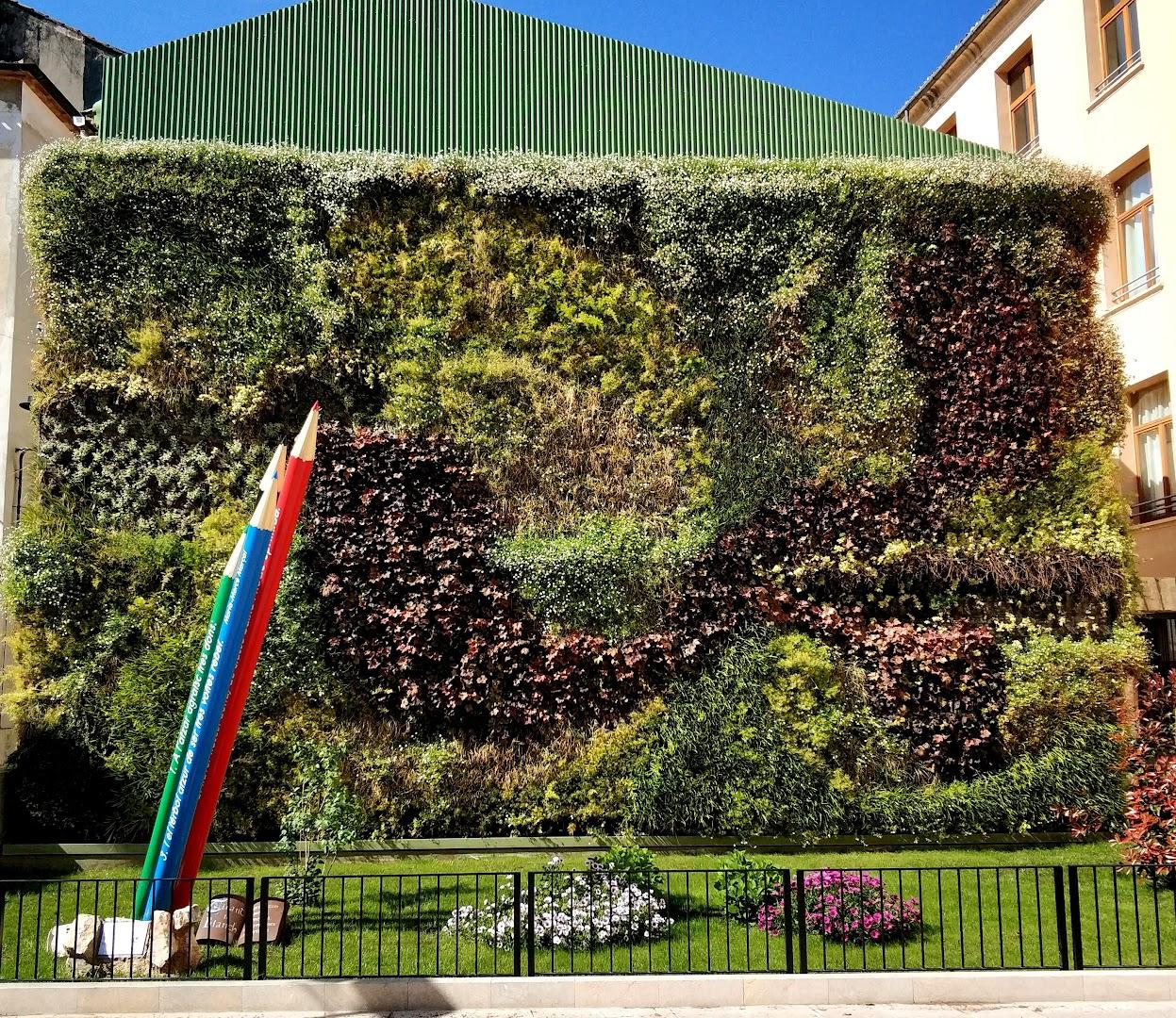 Plantas para jardines verticales de exterior en Valencia