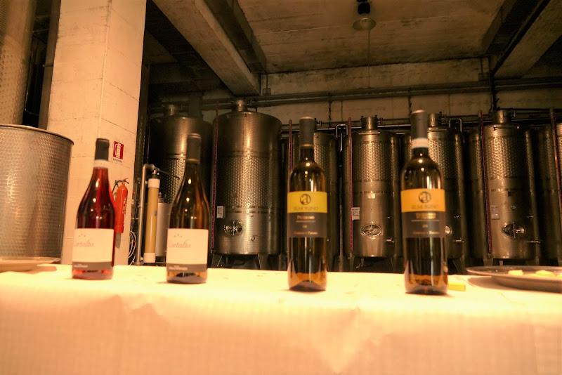 Buon vino di Mar955