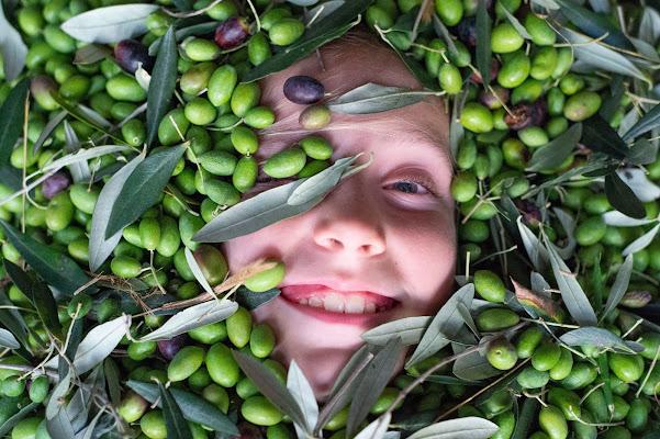 Sorridi oliva di antoniosm8