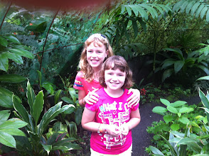 Photo: In the frog house at Los Lagos