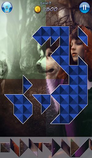 Hidden Pieces: Wolves