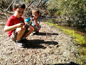 Photo: Little Scientists (and Photographers)