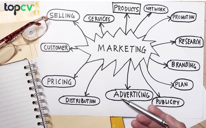 truong-phong-marketing-la-gi