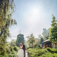 Wedding photographer Artur Postolov (artdes). Photo of 19.02.2016