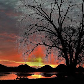 Sizzling Silhouettes  by Kathy Woods Booth - Landscapes Sunsets & Sunrises ( sunrise, reflections, dawn, cloud formations, tranquility, river, park, icy, silhouettes, picnic table )