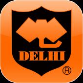 カレーとインド料理のデリー(DELHI)
