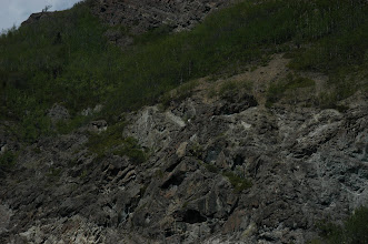 Photo: there is a mountain sheep in there..trust me