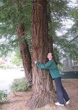Photo: Tree hugger!!