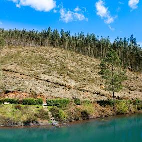 Gralheira - Moita- Anadia  by João Pedro Ferreira Simões - Novices Only Landscapes ( moita, barragem, água, anadia, gralheira, portugal )