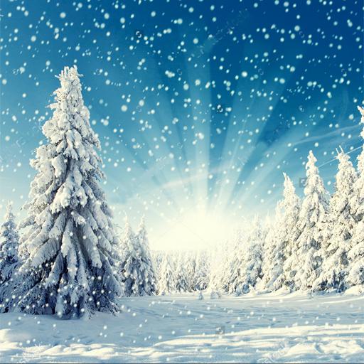 صور رائعة للشتاء