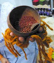 Photo: Seeds used to make the saffron-yellow dye