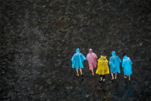 Colors in the Rain di alberto raffaeli