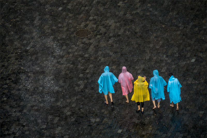 Colors in the Rain di alberto raffaeli
