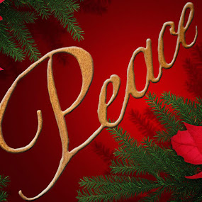Peace with Christmas by Annalie Coetzer - Public Holidays Christmas ( festive, december, red, tree, peace, christmas, holidays, oine, decorations )
