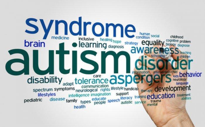 https://rijbewijsgigant.nl/wp-content/upload_folders/rijbewijsgigant.nl/2018/01/autisme-rijles-rijlessen-rijschool-700x435.jpg?v=1515618147246