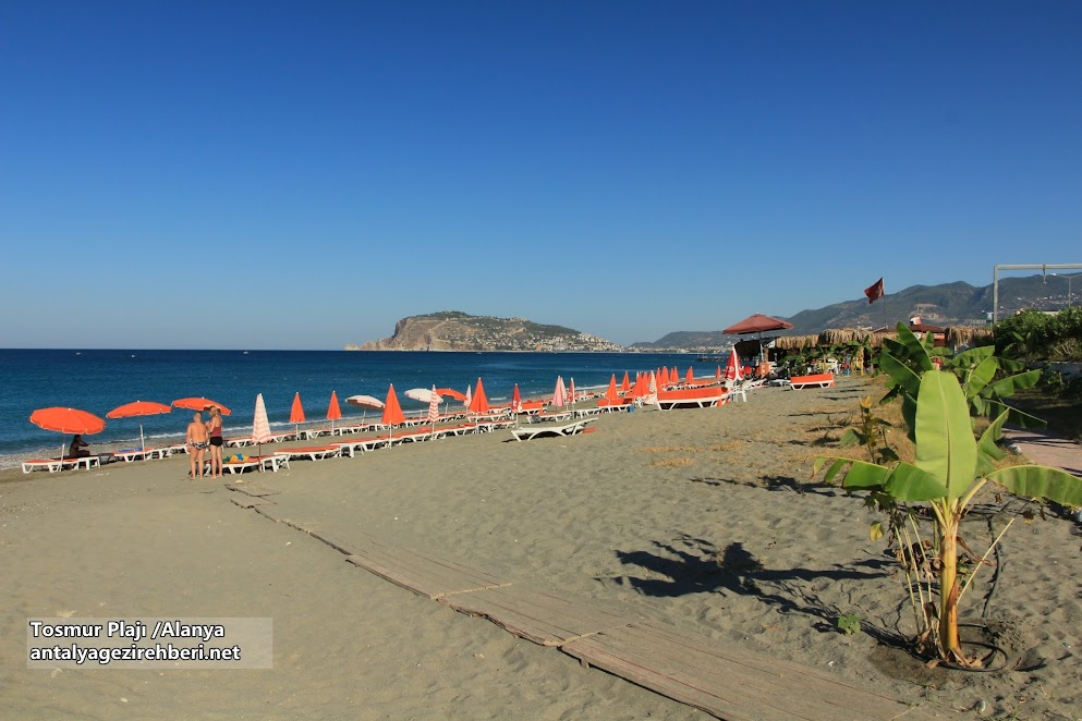 tosmur plajı