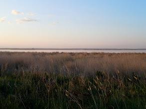 Photo: Sunrise over the marshes
