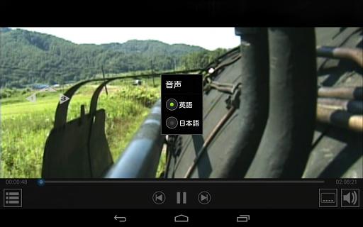 DVD player - TrueDVD Streamer 1.1.19 screenshots 2