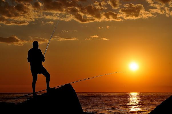 Pesca dorata di poppy