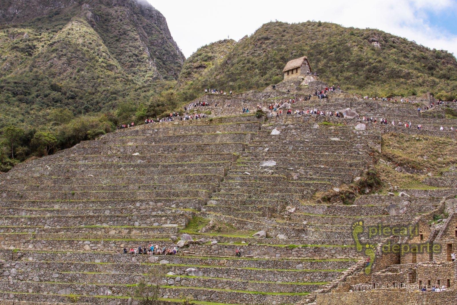 terase agricole la Machu Picchu, in Peru