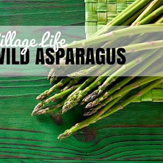 Wild Asparagus.