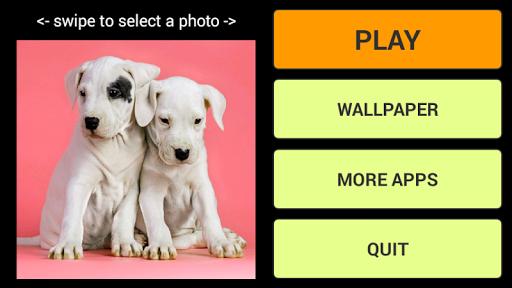 子犬ジグソーパズル+ LWP
