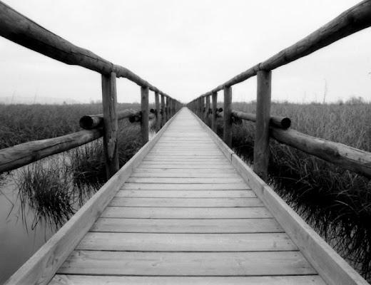 un ponte verso l'infinito di barbelfo