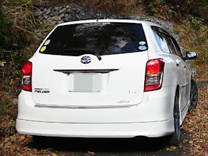 カローラフィールダー NZE144G 1.5X・4WD  H24年式のカスタム事例画像 ゲジマユゲさんの2020年01月17日21:25の投稿