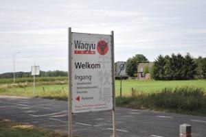 wagyu-board