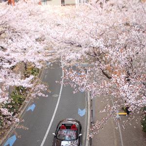 Z4 E89 35isのカスタム事例画像 ぱりぴさんの2019年04月14日09:40の投稿