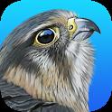 iBird United Kingdom Pro icon