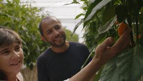 The Sustainable Hacienda thumbnail