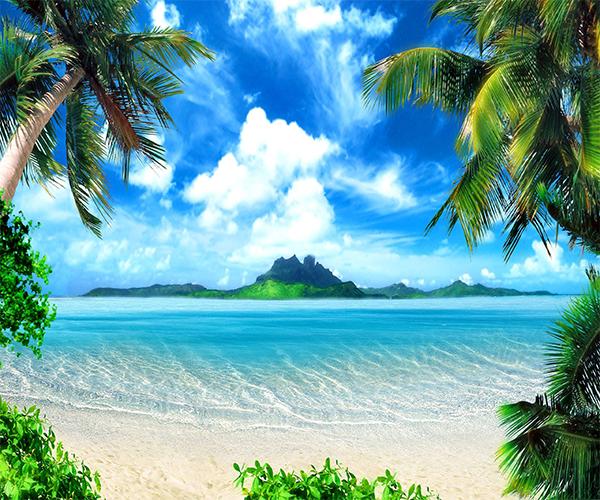 beach live wallpaper - photo #10