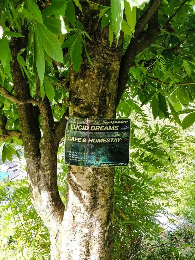 lucid+dreams+hotel+shilha+village+manikaran+sosan+parvati+valley+himachal