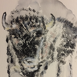 Bison by Jeanne Knoch - Painting All Painting