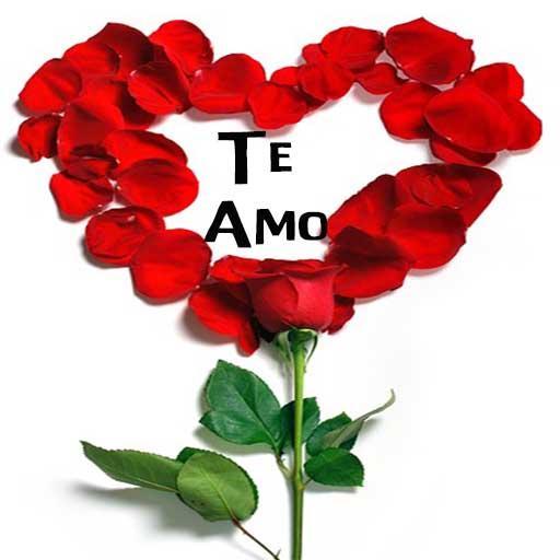 Rosas De Amor Con Frases Romanticas Aplikacje W Google Play