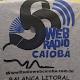 Download Rádio Web Caiobá For PC Windows and Mac