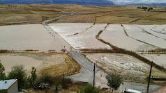 Nacimiento almeriense del río según el foro.