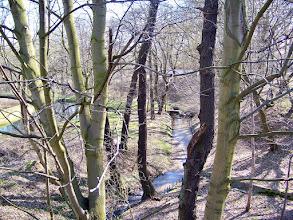 Photo: Zbiornik retencyjny na potoku Swelina