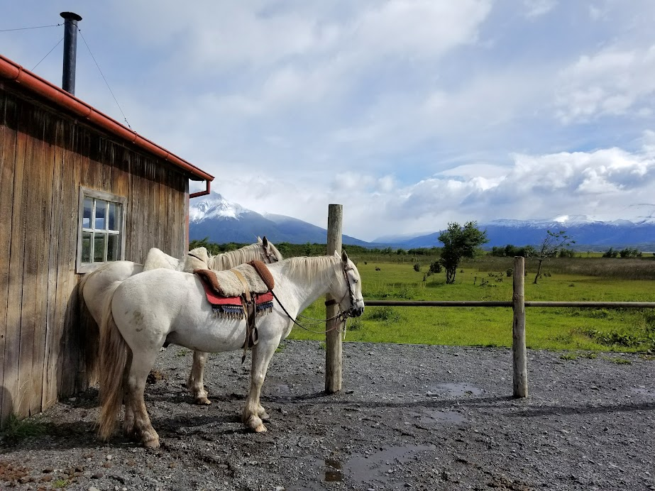 For many, an estancia visit turns out to be a highlight of their Patagonia trip.