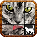 Cat Slide Puzzle icon