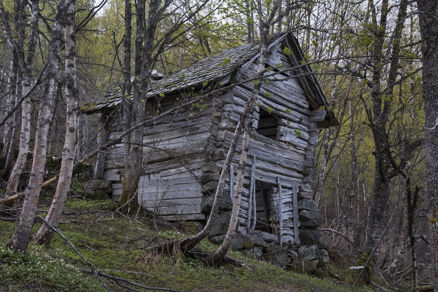 Abandoned small barn. by Olav Aga - Buildings & Architecture Decaying & Abandoned ( farm, mountains, barn, voss, summer farm, abandoned,  )
