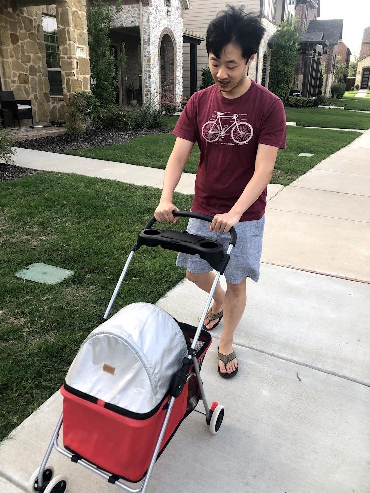 Dobby in stroller