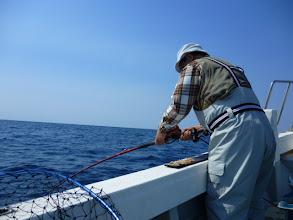 """Photo: ようやく""""オギノ先生""""にもヒット! ん?真鯛じゃないですねー。"""