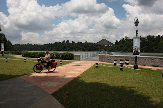 Photo: Year 2 Day 133 - At MacRitchie Reservoir #2