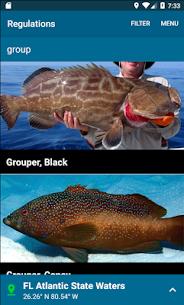 Fish Rules 1