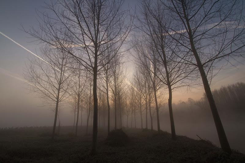 mattinata d'autunno di antonioromei