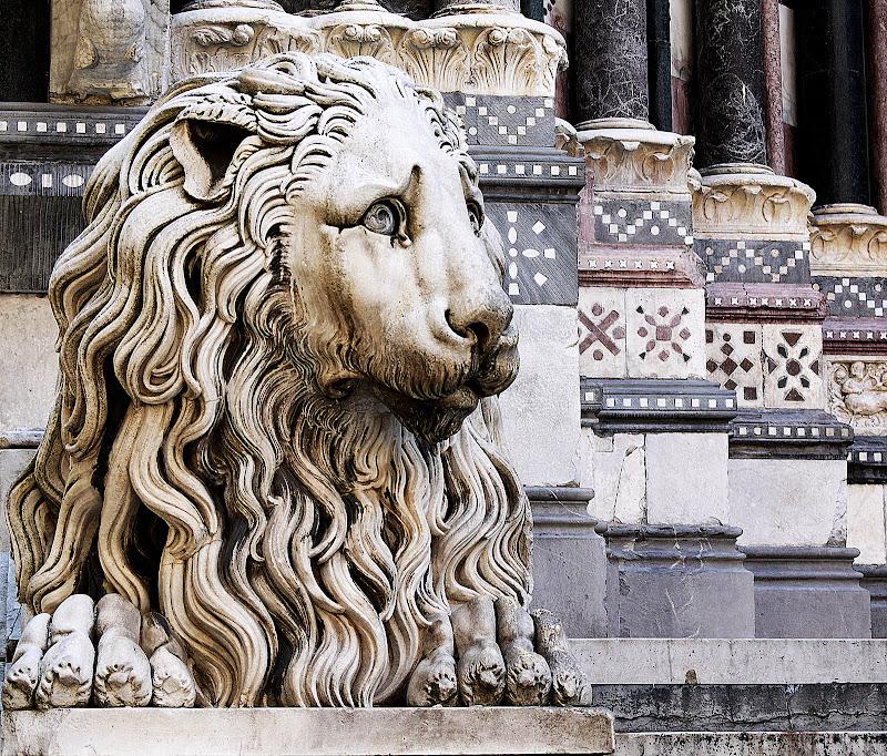 il leone del duomo di Naldina Fornasari