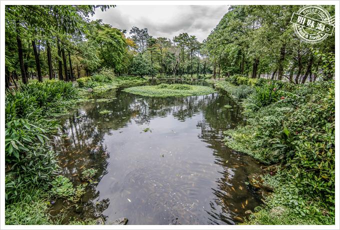 大東溼地公園禁止玩水